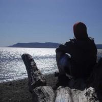 Assis sur la mer, Nicolas Carignan